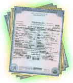 Birth Certificate record, also known as a birth record
